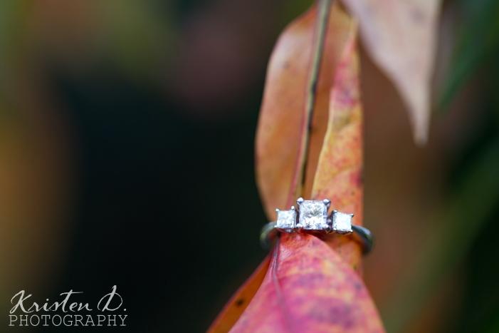 Engagement Photography-3
